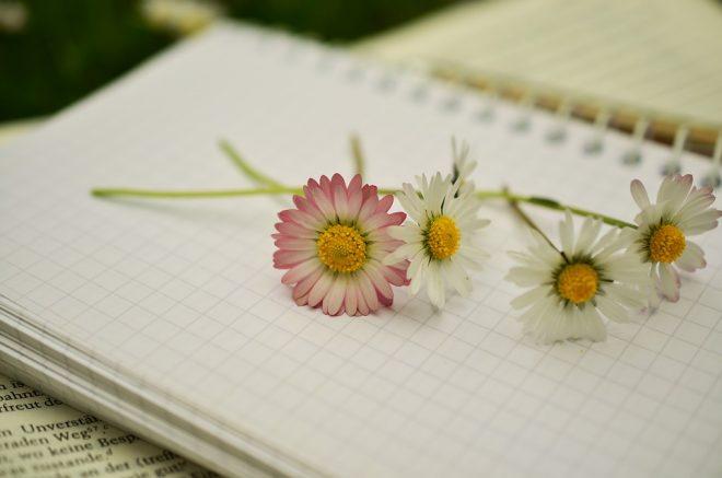 notebook-1405303_960_720