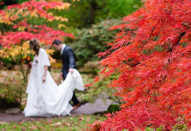 wedding-1017459_640